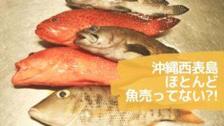 魚ひょうし