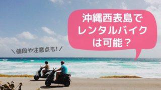 西表島レンタルバイク
